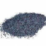 papavero semi